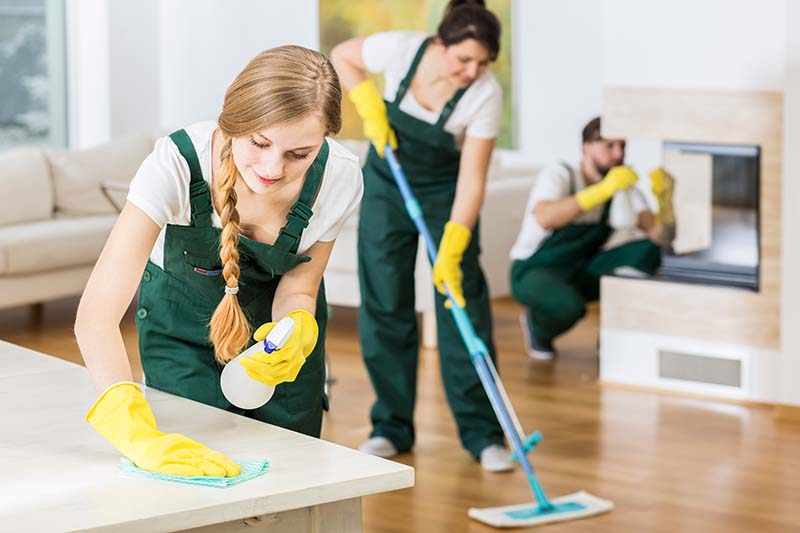 Professional Cleaners Tidying Up House