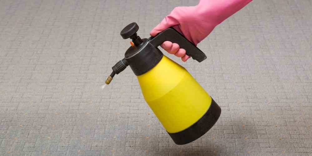 Carpet Cleaner Solutions for Disinfecting